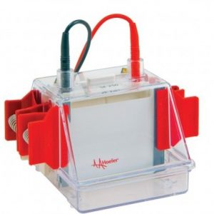 Laboratory Equipment-Mighty Small II Mini Vertical Protein Electrophoresis Unit