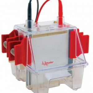 Laboratory Equipment-Mighty Small II Deluxe Mini Vertical Protein Electrophoresis Unit