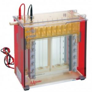 Laboratory Equipment-Standard Dual Cooled Vertical Protein Electrophoresis Unit